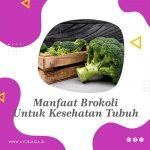 Manfaat Brokoli Untuk Kesehatan Tubuh
