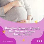 Manfaat Kencur Untuk Ibu Hamil Bunda Harus Tahu!