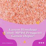Garam Himalaya Untuk MPASI Pengganti Garam Dapur!