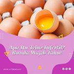 Apa Itu Telur Infertil? Bunda Wajib Tahu!